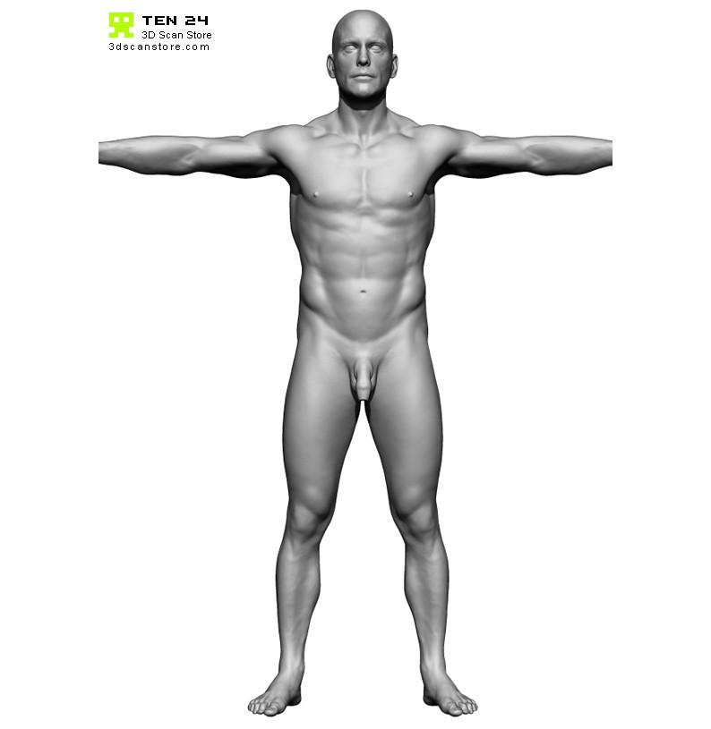 base mesh, Human Body