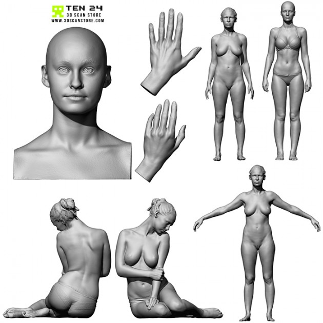 Female Anatomy Bundle 01